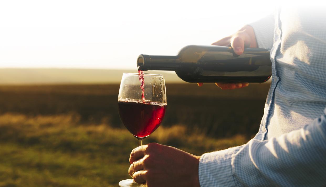 HCI_notizia-vino